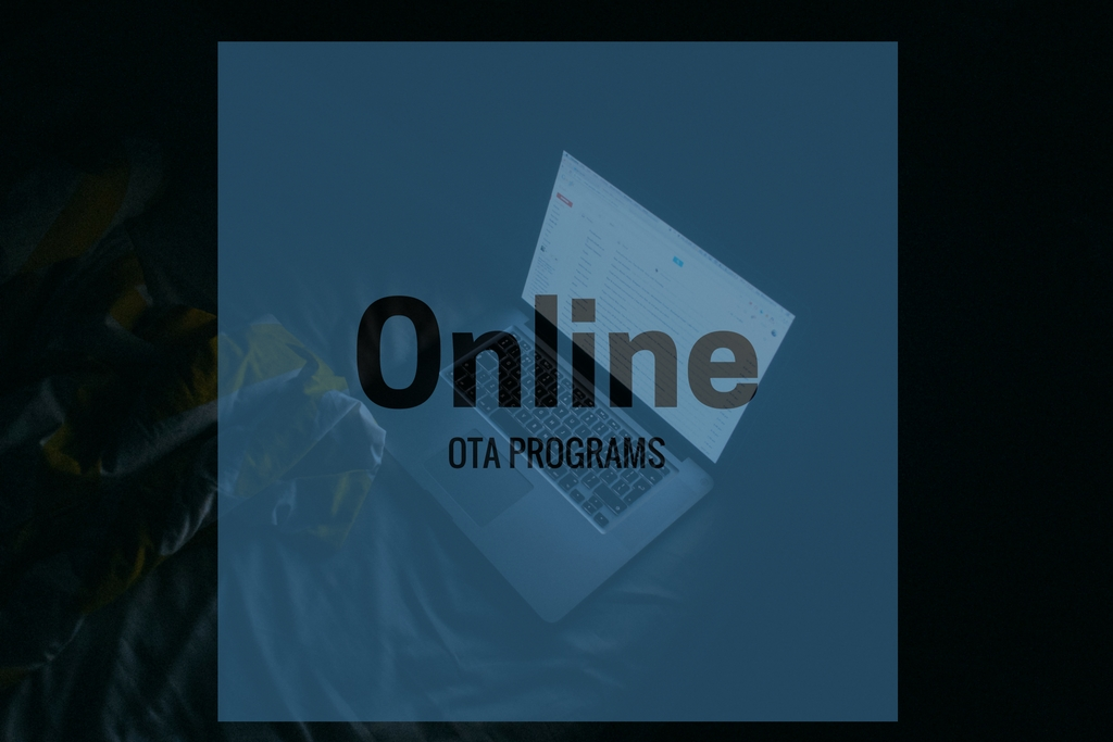 OTA Programs Online What to Consider in Your COTA Education